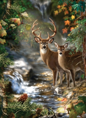 Deer Creek - 1000pc Jigsaw Puzzle by Masterpieces