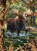 Moose Crossing - 1000pc Jigsaw Puzzle by Masterpieces
