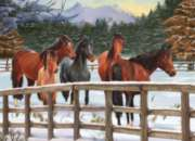 Winter Horses - 1000pc Jigsaw Puzzle By Jack Pine