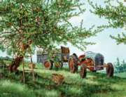 Gathering Apples - 1000pc Jigsaw Puzzle By White Mountain