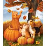 Fall Fun - 550pc Jigsaw Puzzle by Sunsout