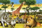 African Plains - 36pc Floor Puzzle By Cobble Hill