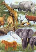 Animal Kingdom - 100pc Jigsaw Puzzle by Springbok