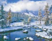 Winter Paradise - 1000pc Jigsaw Puzzle by Springbok