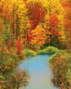 Autumn Reflection - 1500pc Jigsaw Puzzle by Springbok