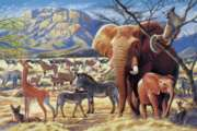 Tomax Jigsaw Puzzles - Savanna Sunrise