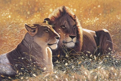 Lions In The Sun - 1000pc Jigsaw Puzzle by Tomax