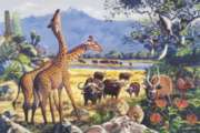 Forest Dreams - 1000pc Jigsaw Puzzle by Tomax