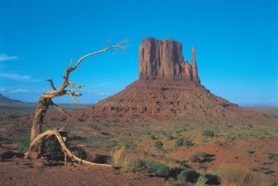 Monument Valley, Utah - 1000pc Glow-in-the-Dark Jigsaw Puzzle by Tomax