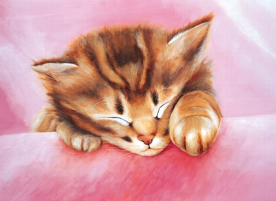Dream Of Kitty - 500pc Jigsaw Puzzle by Tomax