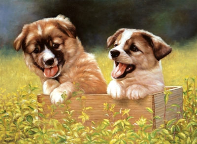 Doggie Garden - 500pc Jigsaw Puzzle by Tomax