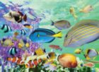 Tropical Marine - 500pc Jigsaw Puzzle by Tomax