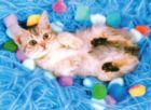 Lovely Kitten - 500pc Jigsaw Puzzle by Tomax
