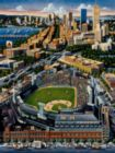 Fenway Park - 500pc Jigsaw Puzzle by Dowdle