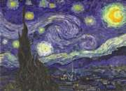 Starry Night - 1000pc Jigsaw Puzzle by Perre