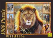 Lion - 1000pc Jigsaw Puzzle by Spiel Spass