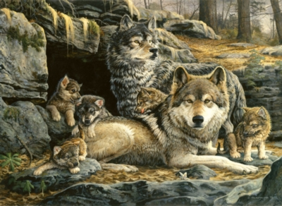 Wolves Puzzles - First Spring