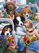 Jigsaw Puzzles - Gardening Buddies