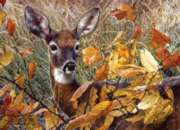 Jigsaw Puzzles - Autumn Lady