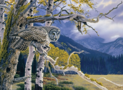 Great Grey Owl - 1000pc Jigsaw Puzzle By Cobble Hill
