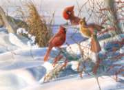 Cobble Hill Jigsaw Puzzles - Birds of a Feather