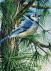 Blue Jay - 300pc Large Format Jigsaw Puzzle By Ravensburger