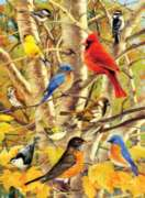 Ravensburger Jigsaw Puzzles - Autumn Birds