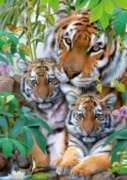 Tiger Family  - 1000pc Jigsaw Puzzle by Ravensburger