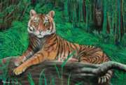 Tiger Trail - 100pc Jigsaw Puzzle By Melissa & Doug