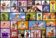 Educa Jigsaw Puzzles - Shared Moments