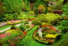 Butchart Gardens, Canada - 1000pc Jigsaw Puzzle By Educa
