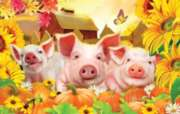 Pig Pen - 100pc Jigsaw Puzzle by Sunsout