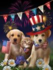Yankee, Doodle and Dandy - 300pc Large Format Jigsaw Puzzle By Sunsout