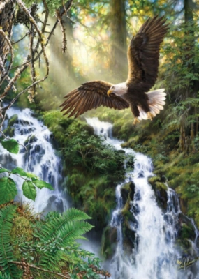 Soaring Eagle - 1000pc Jigsaw Puzzle by Masterpieces