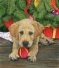 Puppy Love - 300pc Large Format Jigsaw Puzzle By Sunsout