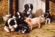 Piggy in the Middle - 200pc Jigsaw Puzzle By Sunsout