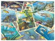 Fishing Frenzy - 1000pc Jigsaw Puzzle By Sunsout