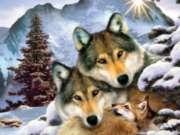 Jigsaw Puzzles - Wolf Harmony