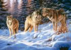 Wolves - 500pc Jigsaw Puzzle by Castorland