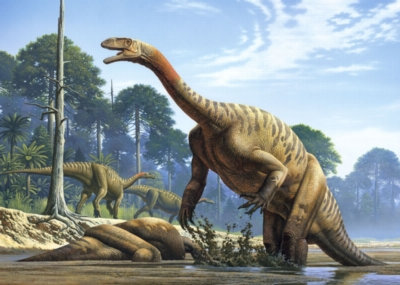 Jigsaw Puzzles - Plateosaurus