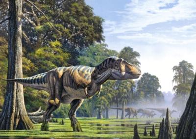 Jigsaw Puzzles - Tyrannosaurus