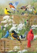 Jigsaw Puzzles - Hautman Brothers: Songbird Menagerie