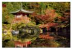 Daigo-Ji Temple, Kyoto - 1500pc Jigsaw Puzzle By Educa