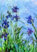 Eurographics Jigsaw Puzzles - Monet: Irises