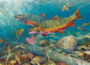 Cobble Hill Jigsaw Puzzles - Trout