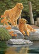 Companions - 1000pc Jigsaw Puzzle By Cobble Hill