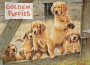 Cobble Hill Jigsaw Puzzles - Golden Puppies