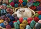Fur Ball - 1000pc Jigsaw Puzzle By Cobble Hill