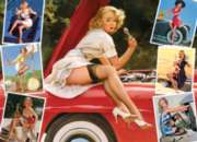 Cobble Hill Jigsaw Puzzles - Roadside Attractions