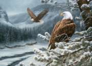 Cobble Hill Jigsaw Puzzles - Winter Eagles